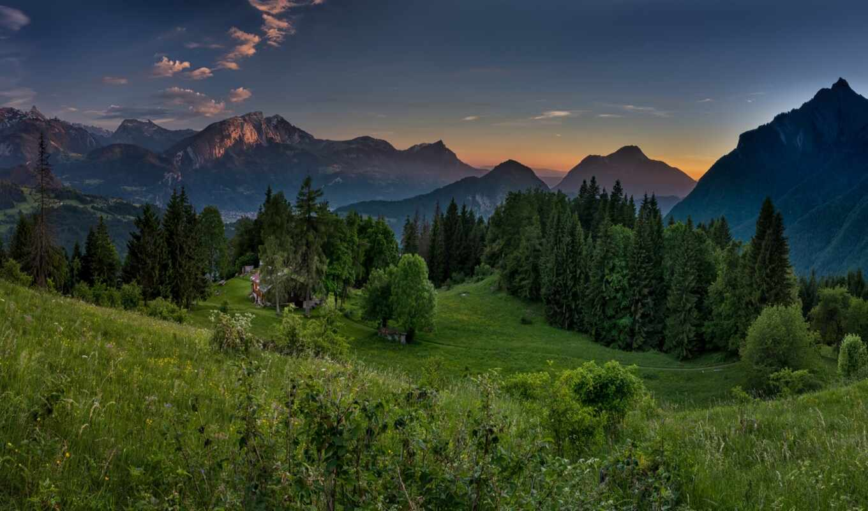гора, трава, альпы, природа, verdant, лес, francii, закат, rock, небо