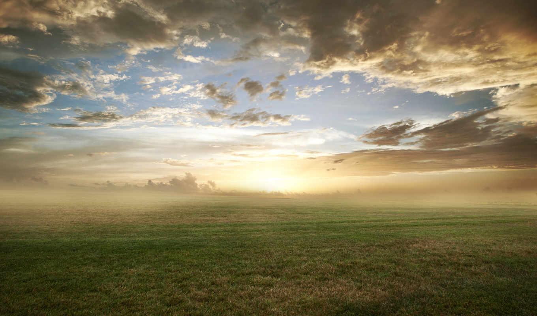 трава, природа, газон, поле, облака, утро, туман, картинку,
