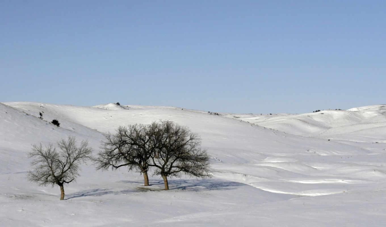 снег, winter, scenes, scene, desktop, фон, photos,