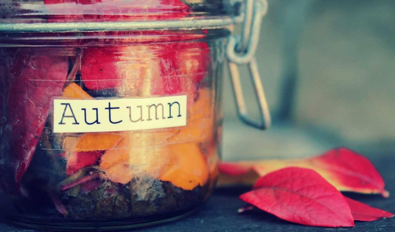 осень, надпись, банка, листья, красный, оранжевый