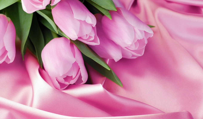 тюльпаны, нежные, сиреневые, cvety, шелке, макро, розы, фотообои, широкоформатные,