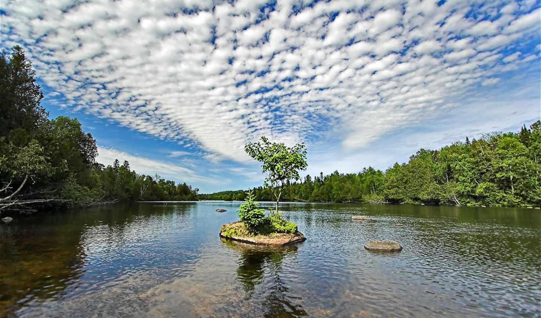 river, island, nature, прекрасных, tiny, forest, troutnutbackground, подборка,