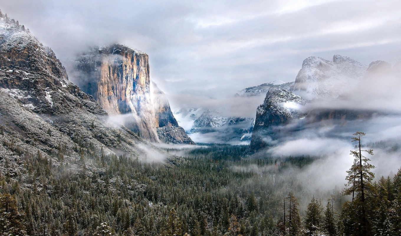 туман, yellowstone, les, утро, найти, лесом, ущелье,