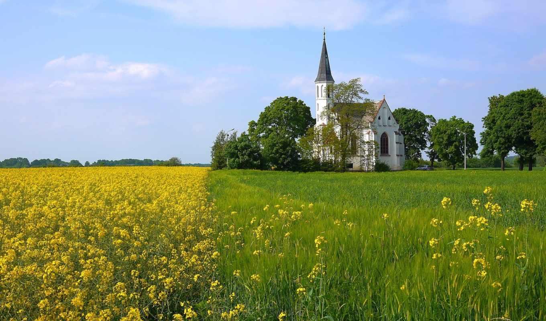 pole, rzepak, нояб, rzepaku, kościół, church,