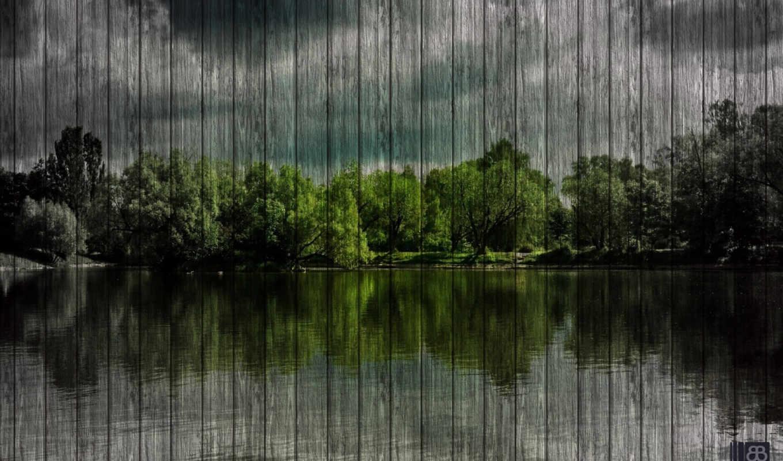 озеро, лес, природа, лесу, отражение, summer, метки, деревя, небо, комментарий,