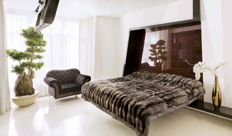 интерьера, гостиной, столовой, кухней, dizain, кухня,