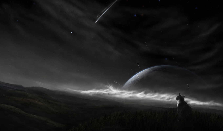 кот, чёрно, космос, планета, белые, звезды, наблюдает, ночь, за,