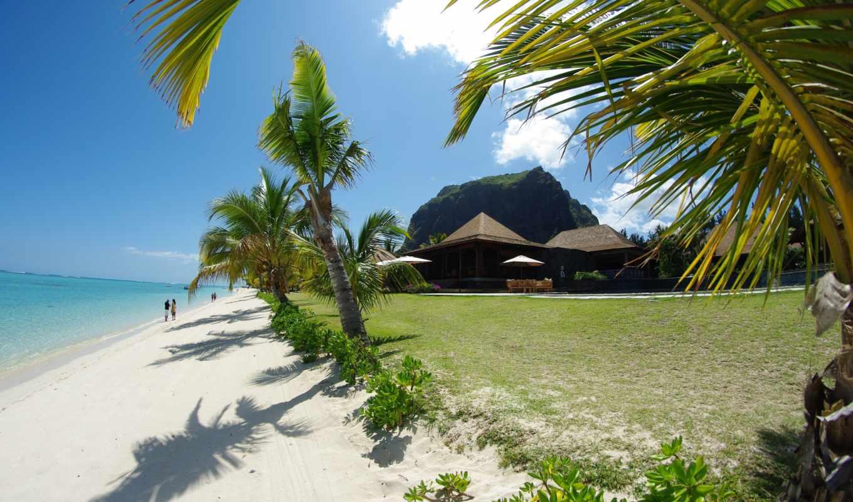 more, пальмы, пляж, домики, пейзажи -,