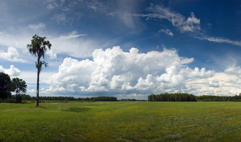 небо, красивое, дерево, посмотреть, картинку, фотку, download, поле,
