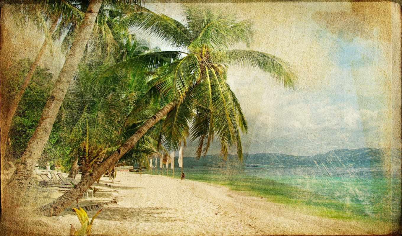, beach,