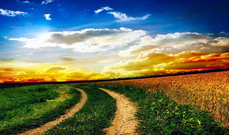 природа, oblaka, небо, трава, поле, landscape, дороги, закат,