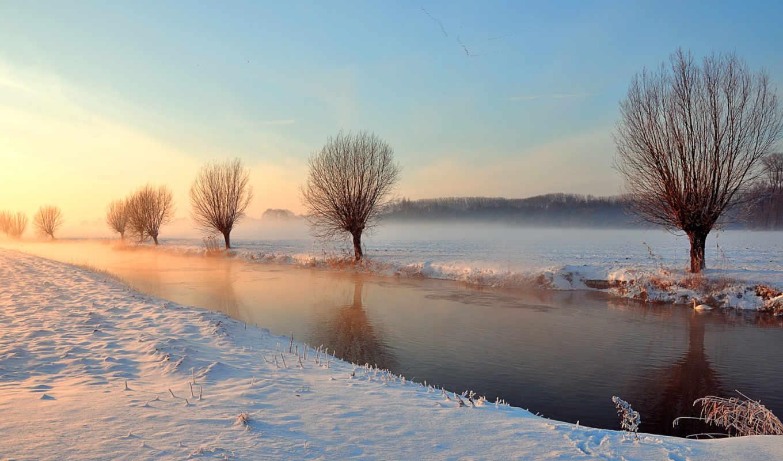 деревья, зима, река, лебедь, канал, свет,