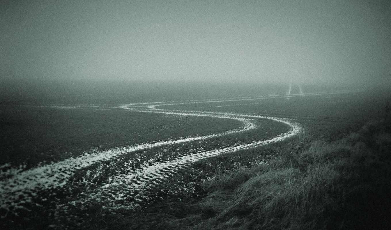 туман, дорога, осень, поле,