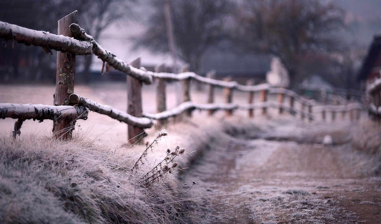 winter, тропинка, иней, hedge, забор, размытость, снег, дек,