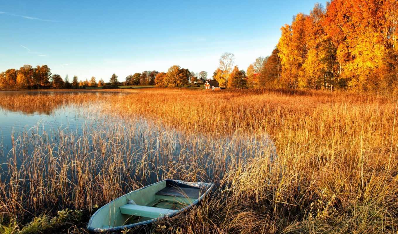 домики, осень, озеро, деревья, лодка,