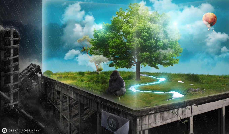 горилла, последняя, последний, hope, апокалипсис, креатива, glass, подборка,