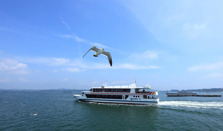 море, корабль, gulls, корабли, пейзажи, чайки, загрузок,