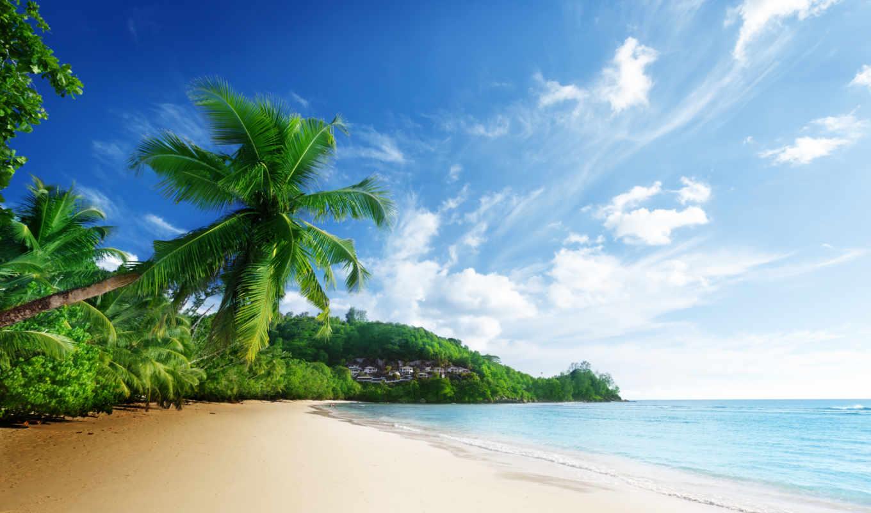 пейзаж, пляж, more, priroda,