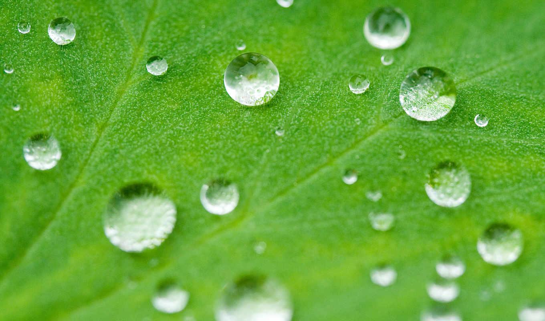 water, bead, 查看源网页, ice, hydro, coating, van, maker, find,