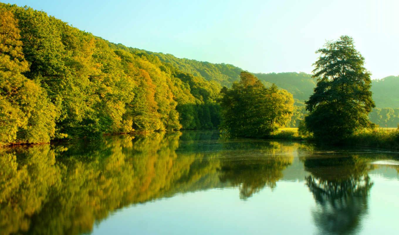 природа, новая, zealand, небо, деревя, отражение, река,
