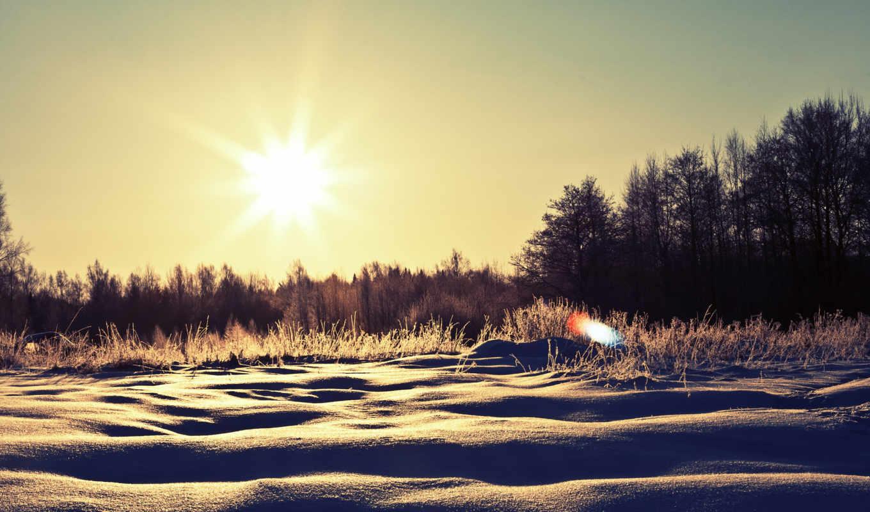 winter, картинка, sunny, nature, snow, schnee, bume, wintertag,