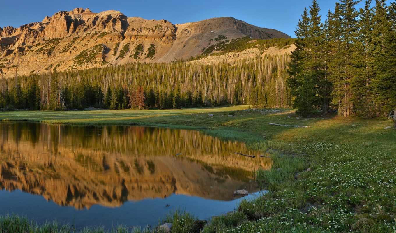 природа, трава, горы, лес, цветы, небо, озеро, отражения, вода, деревья,