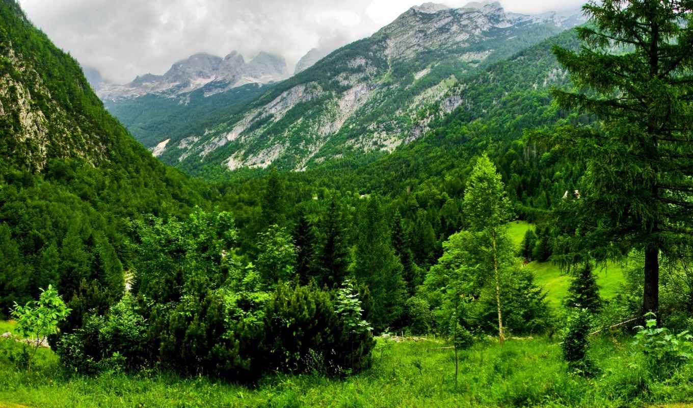 природа, горы, швейцария, разделе, часть,