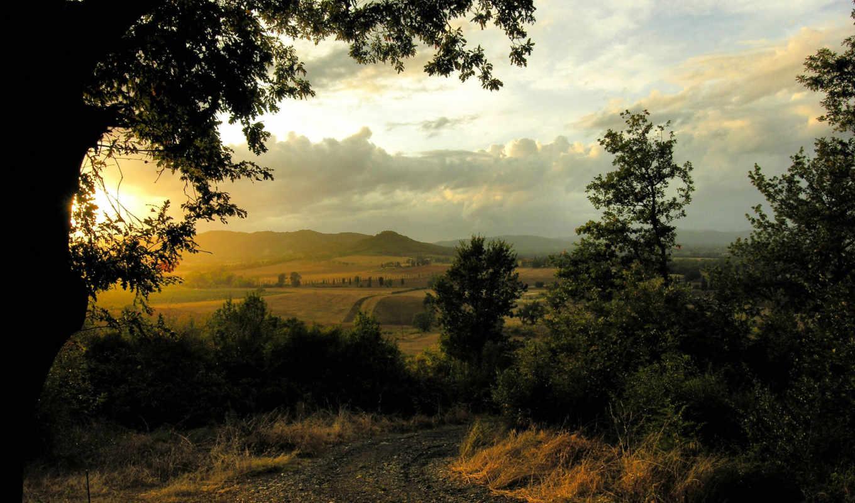 ,закат, красиво, природа, лес,