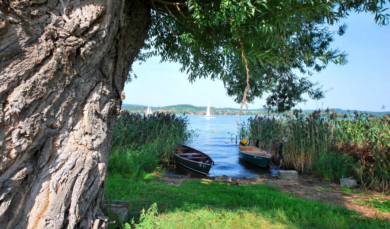 kartinka, priroda, трава, лодки, горы,