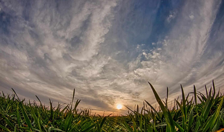 explore, пшеница, ponad, виджет, que, категории, uma, lepszą, loading, tapetami, stronę,