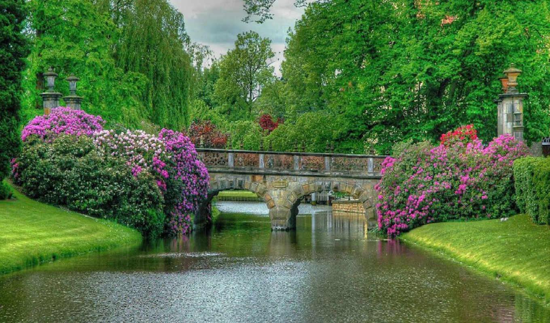 мост цветы речка загрузить