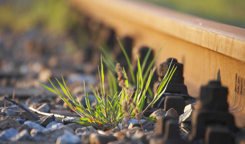 дорога, железная, камни, рельсы, камен, шпалы, поставить, трава,
