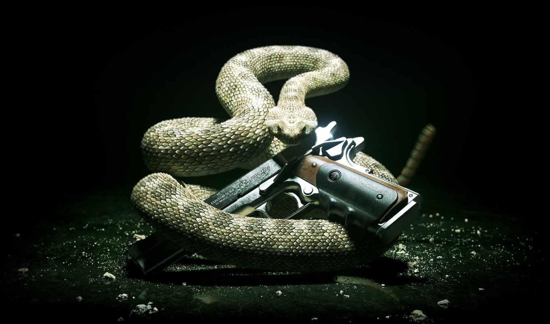 guns, hitman, snake, absolution, оружие, пистолет, weapons, картинка, ур,