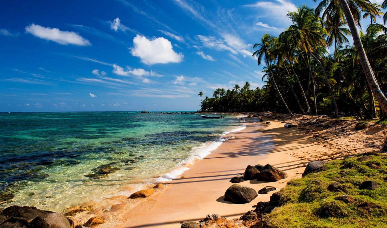 пляж, пальмы, summer, песок, tropics, море, камни, ocean, природа, картинка,