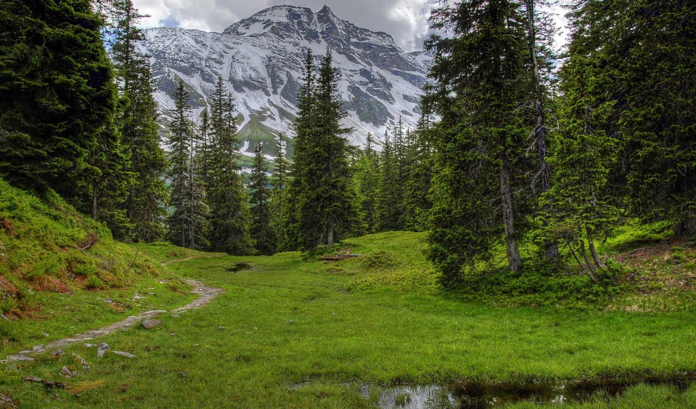 австрия, горы, нояб, часть, природа, деревья, альпы, пейзаж,