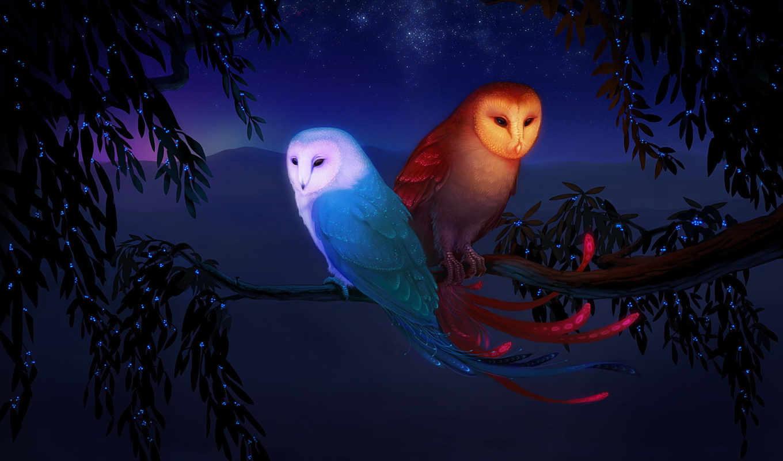 moon, sun, art, fantasy, dreamies, stars, hier, изображение, птицы, совы, und, den,