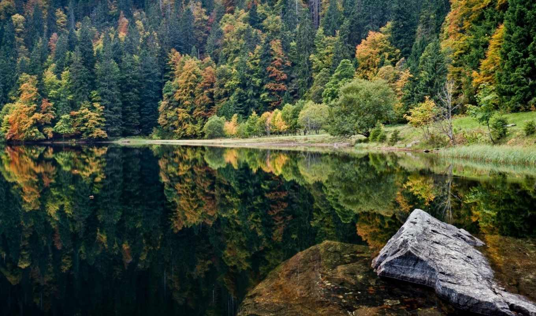 природа, озеро, лес, камень, осень, landscape, water, природы, trees, красивые,