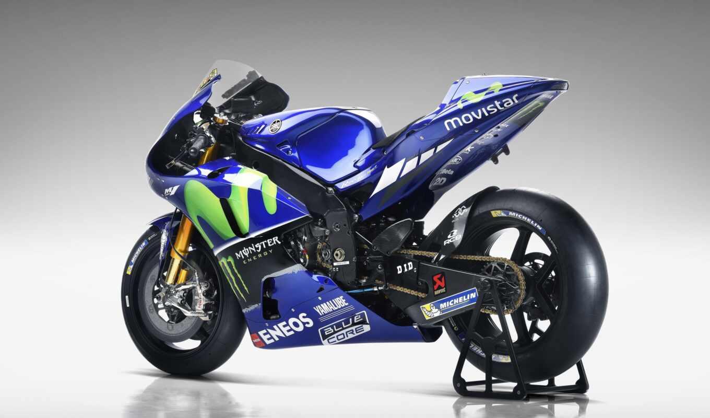movistar, команда, мотоцикл, bike, season, fairing, картинка, gonkii, valentino, sportbike, yamah
