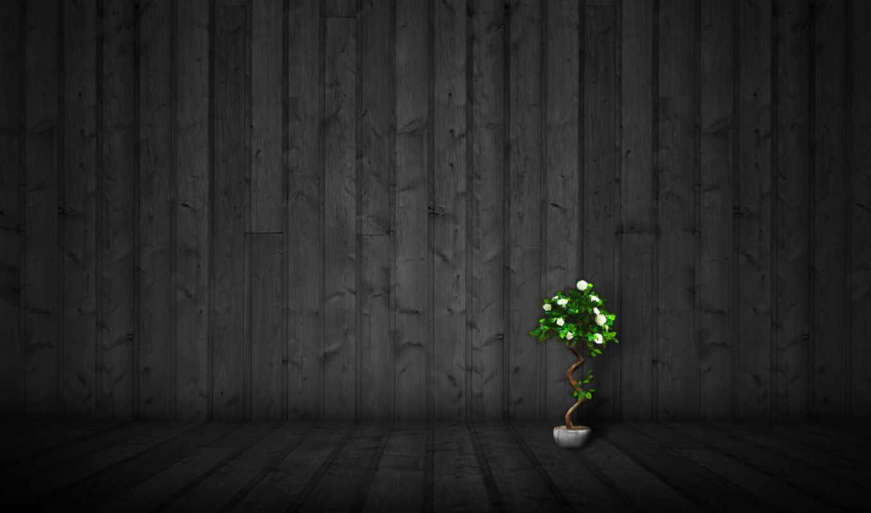стена, стиль, минимализм, цветы, wallpapers, вазон, настроения,