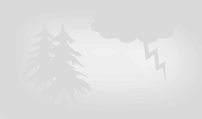 ,гроза, елка, молния