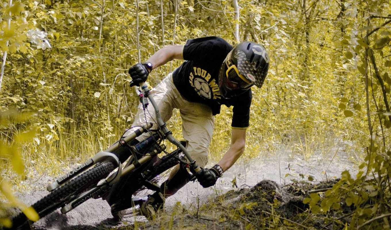 велосипед, дорога, велоспорт, лес, biking, desktop, спорт, bike, trek, картинка, photos, фотографии, download,