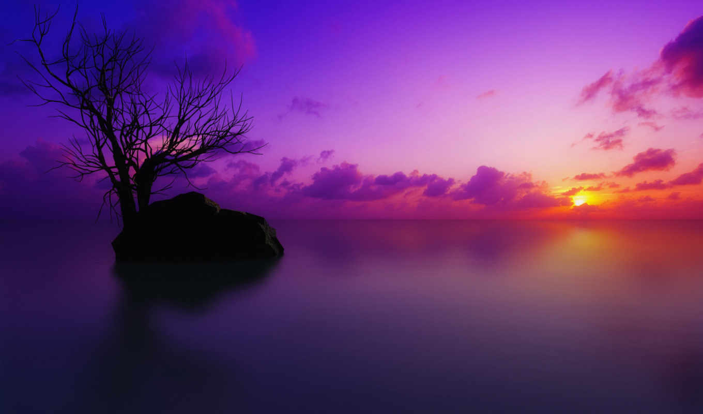 утро, dengan, скачайте, вечерняя, закат, kita, our,