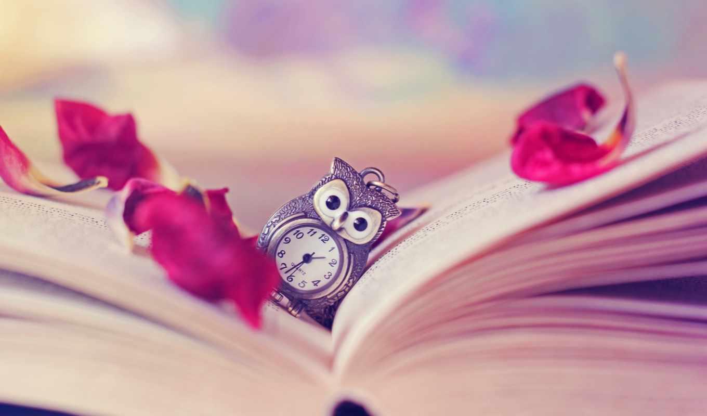 сова, watch, книга, стрелки, винтаж, лепестки, красивые, птицы,