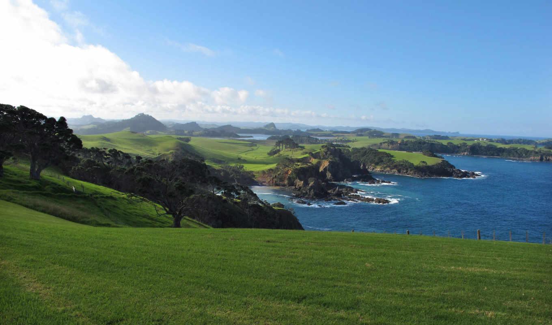трава, газон, море, landscape, небо, вид, природа, деревя, берег, дек, water,