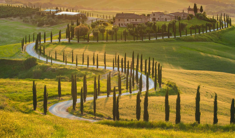 природа, italy, tuscany, деревя, поля, фотообои, landscape, холмы, фотопанно,