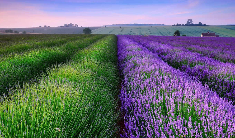 excelent, landscapes,
