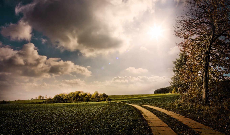дорога, лес, поле, жигули, ввода, янв, дороги,