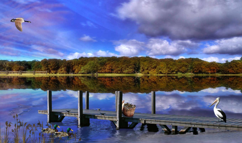 природа, тигр, desktop, озеро, flying, со, гора, пейзажей, страница,