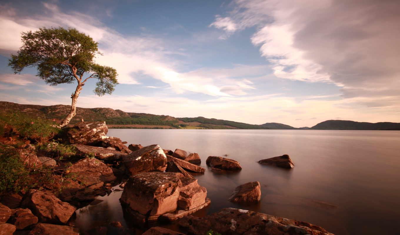 дерево, озеро, небо, камни, природа, озера, реки,