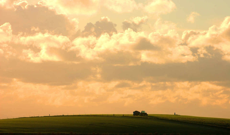 небо, трактор, облака, поле, природа, смотрите, урожая, розовое, сельскохозяйственные, поля, сбор,